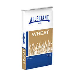 Allegiant Seed wheat bag