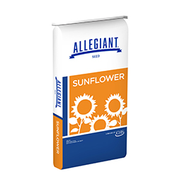 Allegiant Seed sunflower bag